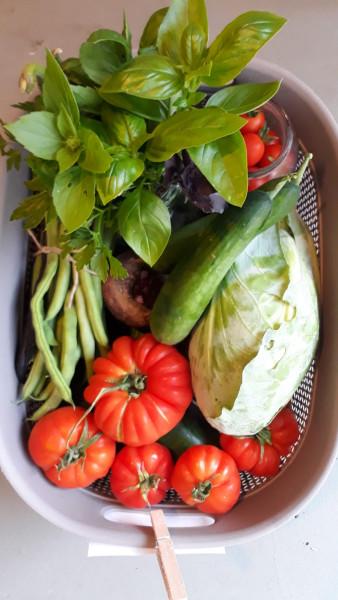 Gemüsekiste klein
